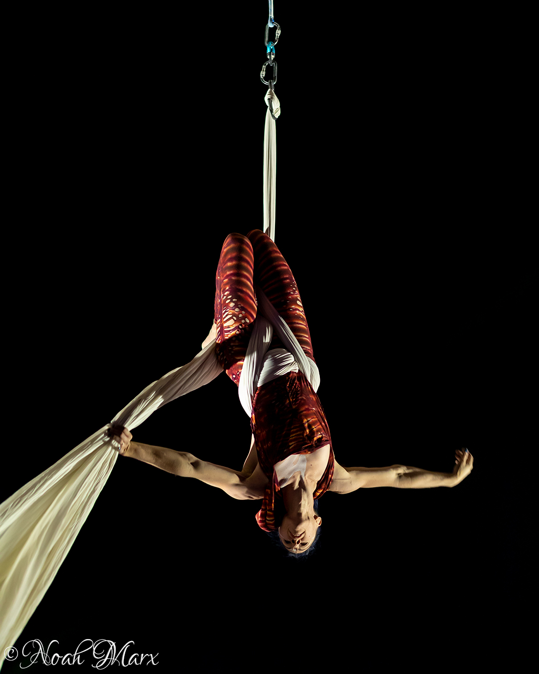 Dana performing on silks